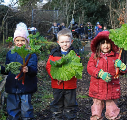 Froebel Trust -A research project exploring outdoor provision